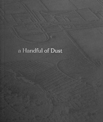 A Handful of Dust Critical Essays